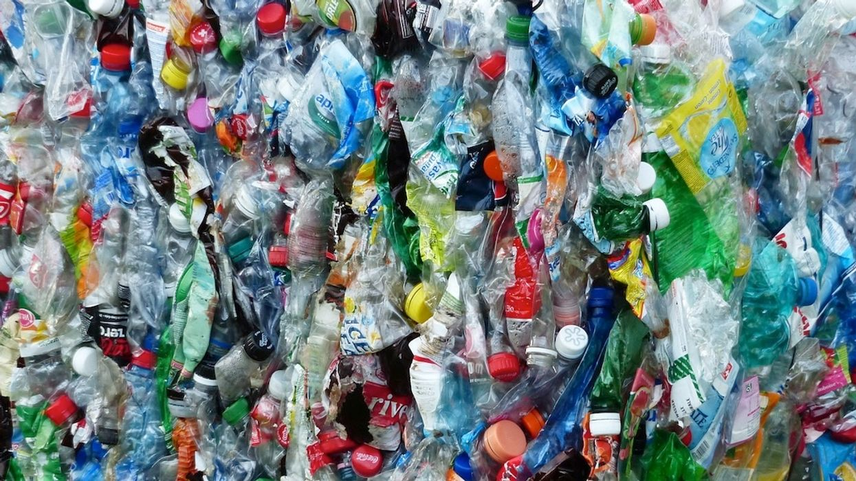 U.S. Asks China to 'Immediately Halt' Ban on Foreign Waste