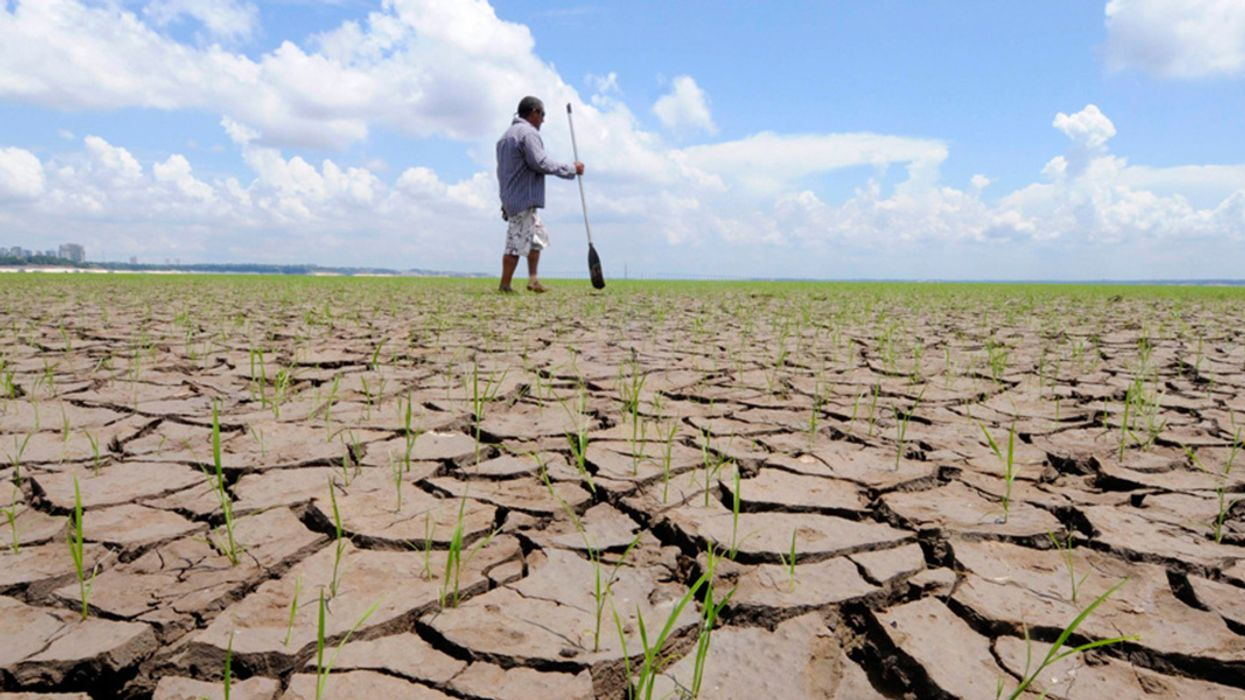 Half a Degree of Warming Makes a Big Difference to Global Food Security, Study Finds