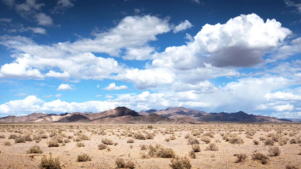 Mojave Desert Protections and Renewable Energy Under Attack