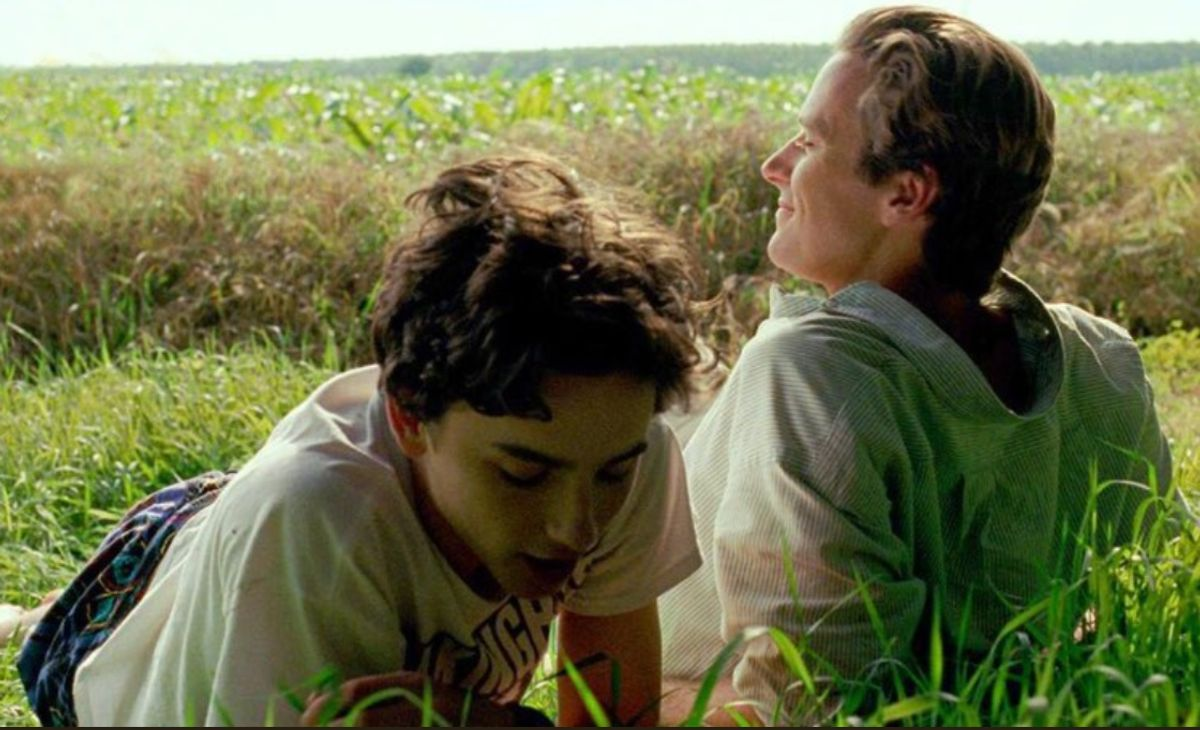 The Beauty Of 'Call Me By Your Name'
