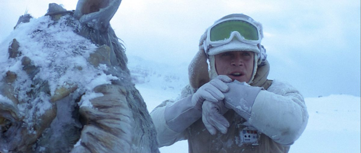 """5 Reasons Summer Is Better Than Winter As Told By """"Star Wars"""" Characters"""