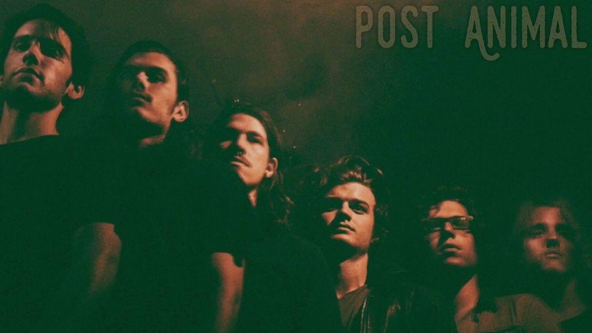 Joe Keery's band Post Animal Animal drop's next month
