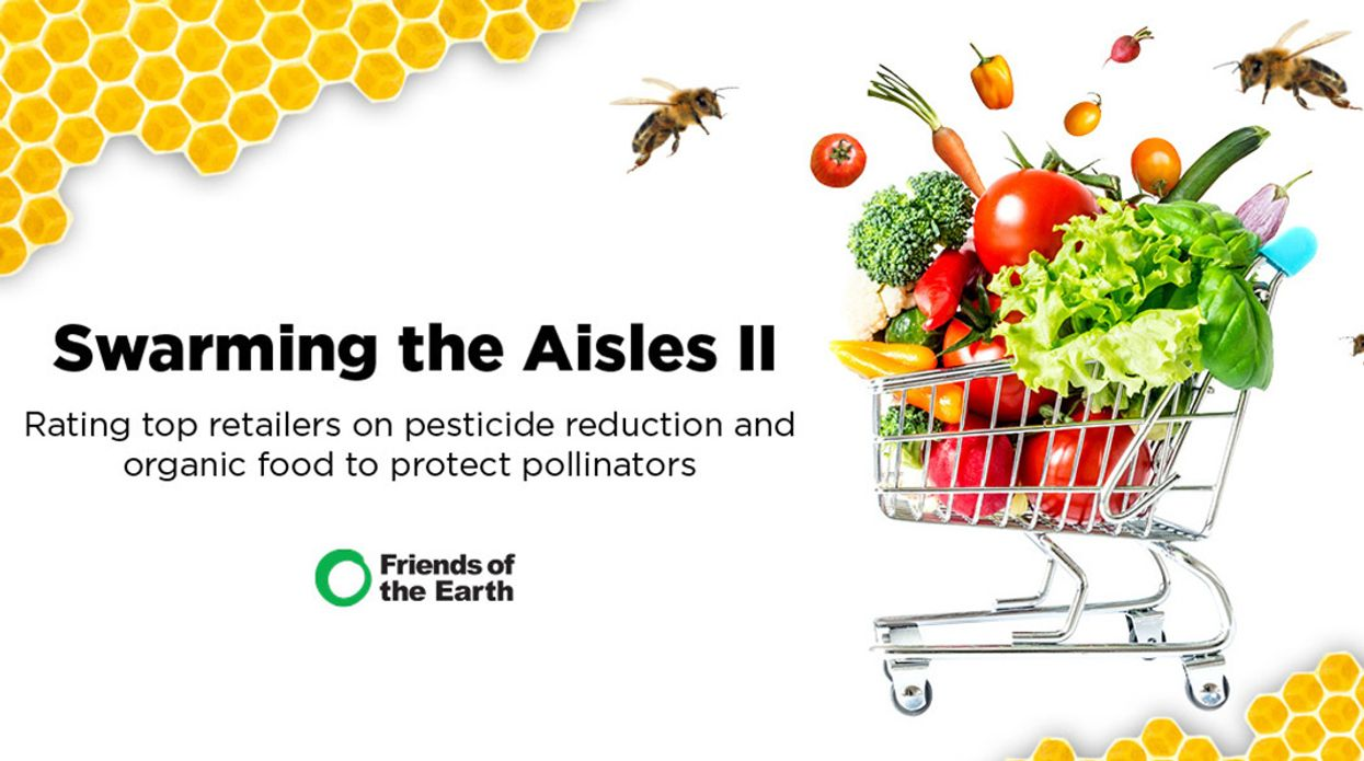 Food Retailers Fail to Protect Bees From Toxic Pesticides