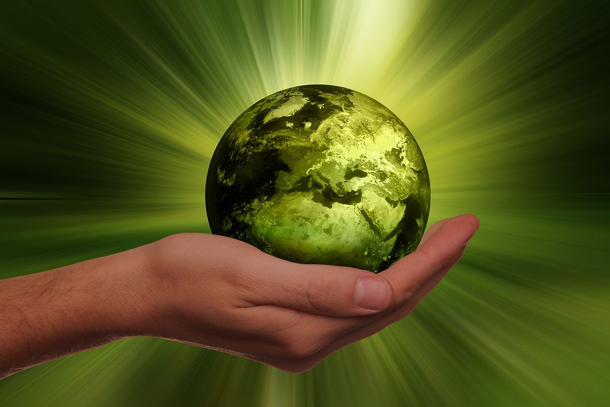 Three Simple Ways To Reduce Your Carbon Footprint
