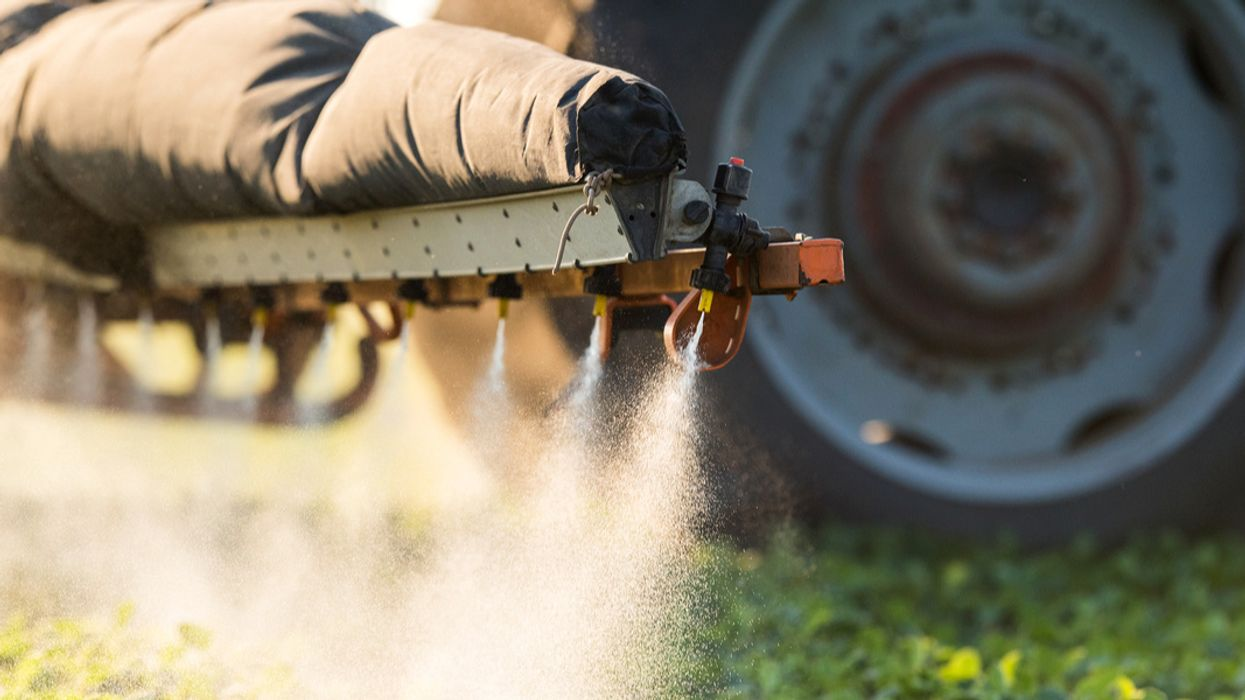 Environmentalists and Farmers Seek Court Decision Halting Use of Dow's 'Agent Orange' Pesticide