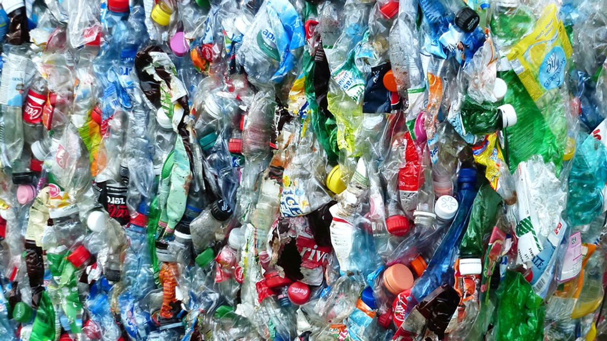 Scientists Accidentally Develop 'Mutant' Enzyme That Eats Plastic