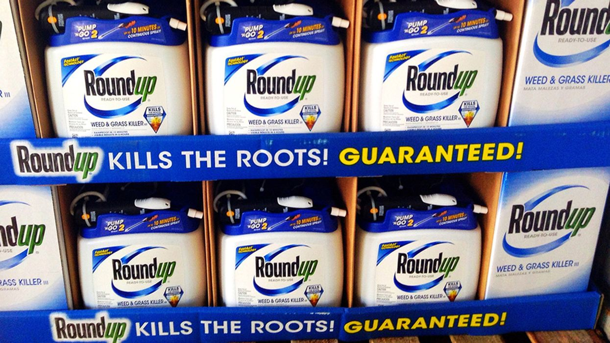 Germany to Put 'Massive Restrictions' on Monsanto Weedkiller