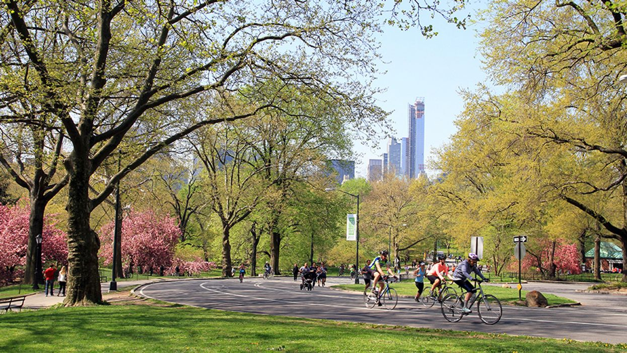 New York's Central Park Is Going Car-Free