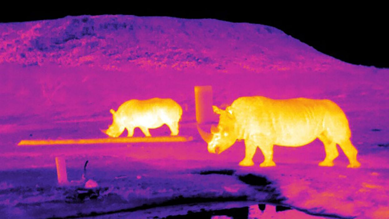 To Save Endangered Species, Scientists Point Stargazing Software Back to Earth