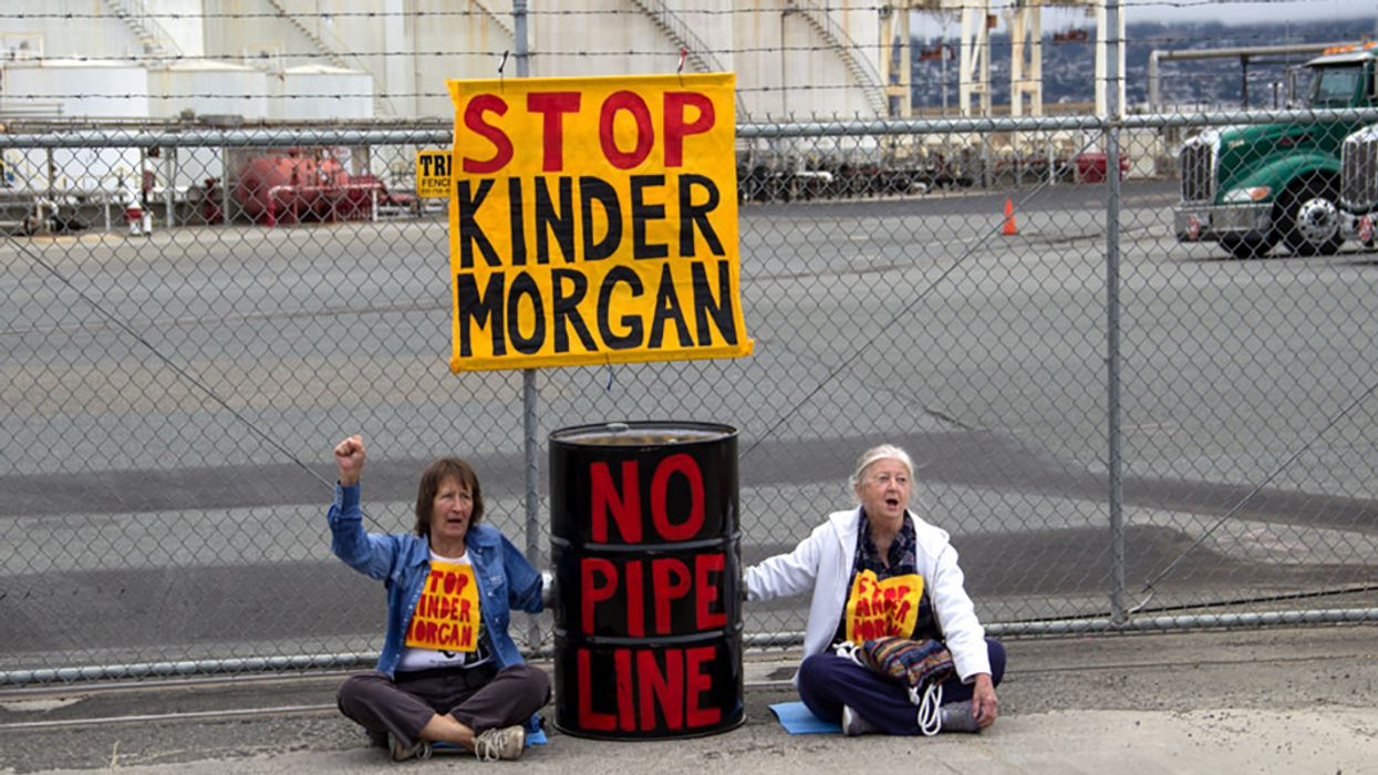 Opposition Forces Kinder Morgan to Halt Trans Mountain Pipeline
