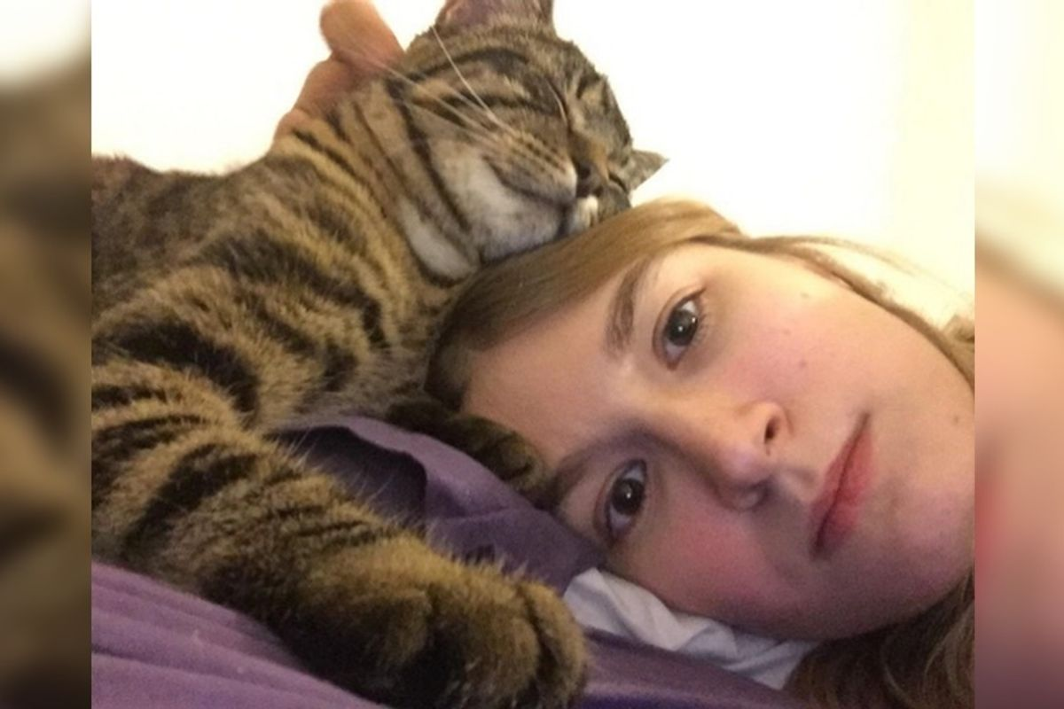 Couple Saves Stray Kitten Abandoned in the Woods, the Kitty Won't Stop Cuddling.