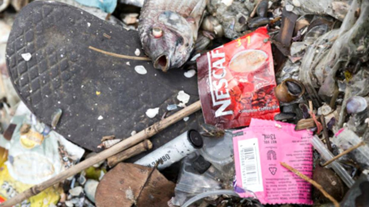 Nestlé's Plastic Initiative Called 'Greenwashing' by Greenpeace