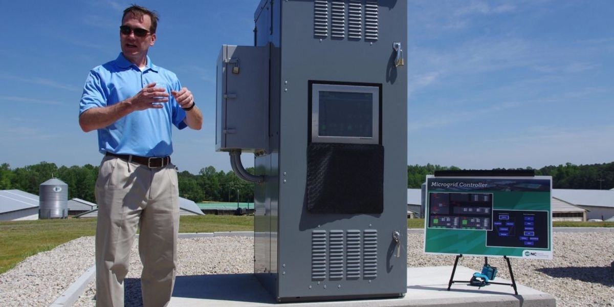 Biogas microgrids could reduce odors and outages for hog farm neighbors