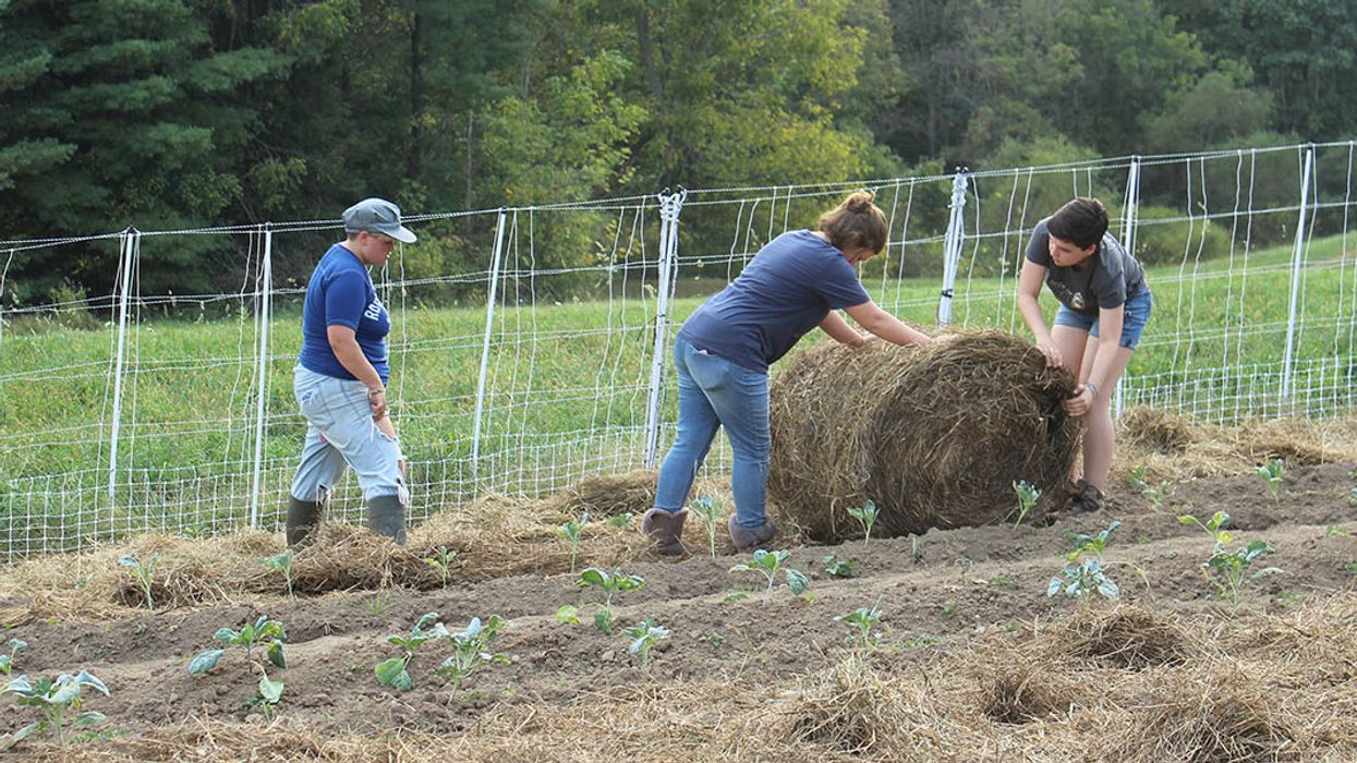 Learning to Farm Is a Graduation Requirement at This High School