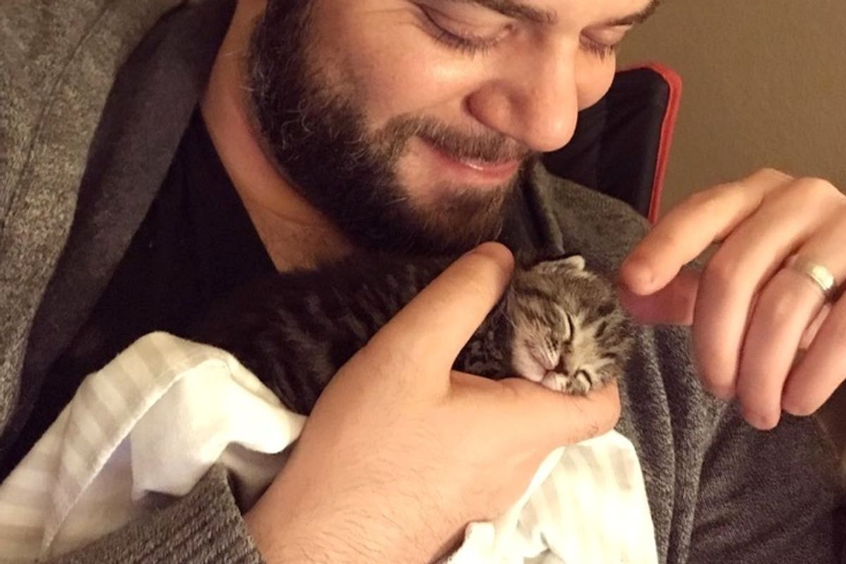Worker Heard Kitten Meows Coming From Packaging Box and Found Tiny Kitty In Need of Love