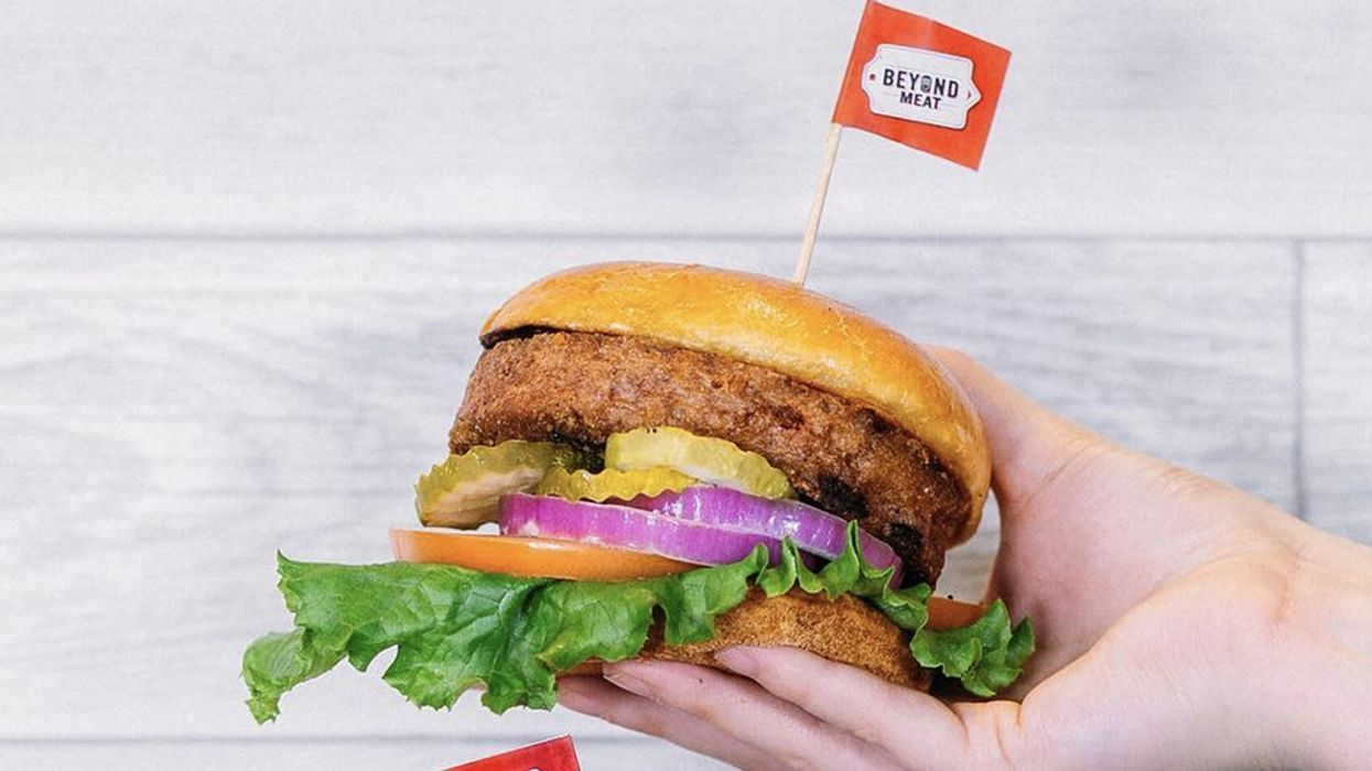 Plant-Based Meat: The Cosmetic Color Problem