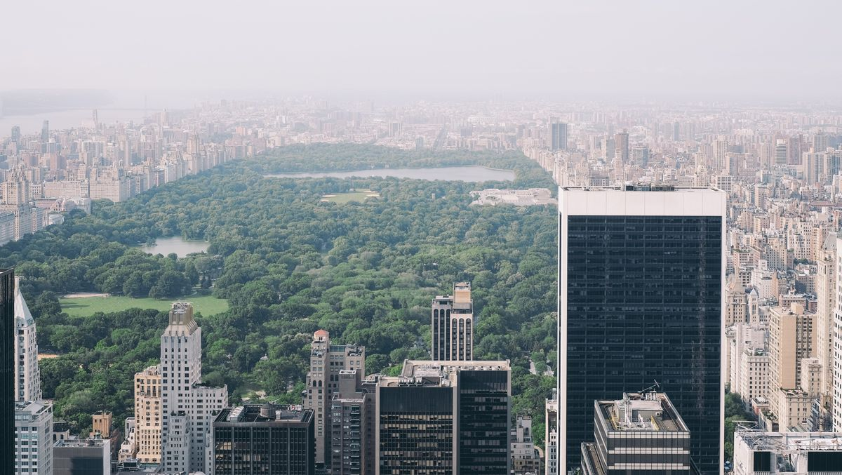 Before Central Park: The Cost Of A Free Park