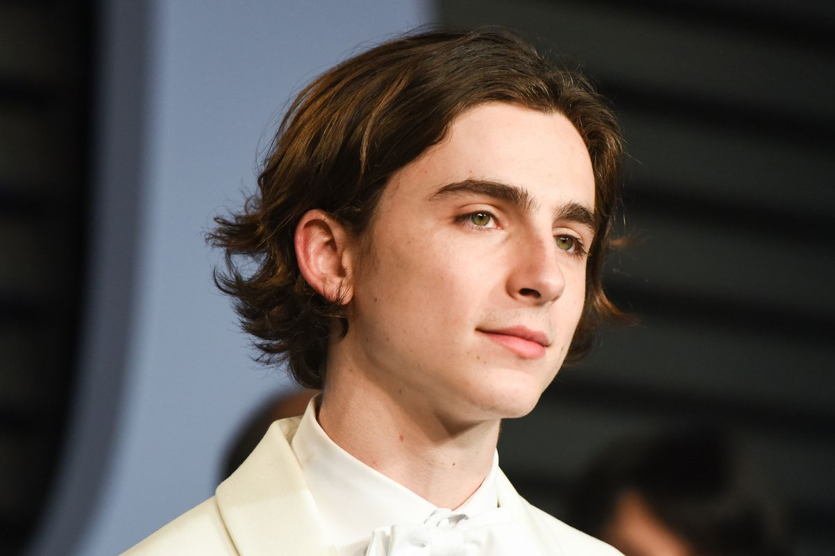 See the First Glimpse of Timothée Chalamet as a Recovering Meth Addict in 'Beautiful Boy'