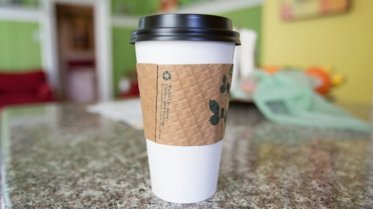 Single-Use Coffee Cups Banned in Scottish Government Buildings