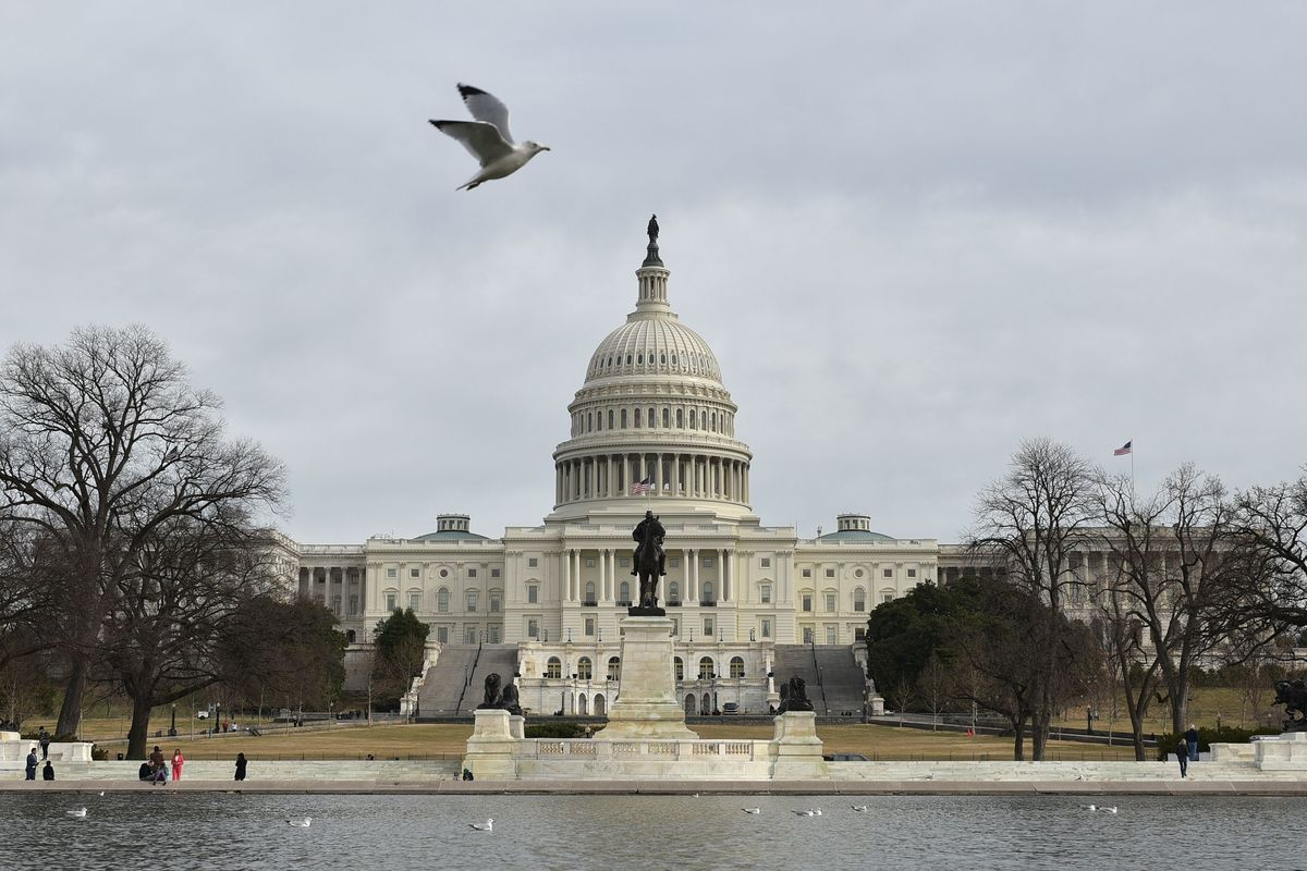 U.S. Close to Electing First Ever Native American Congresswoman