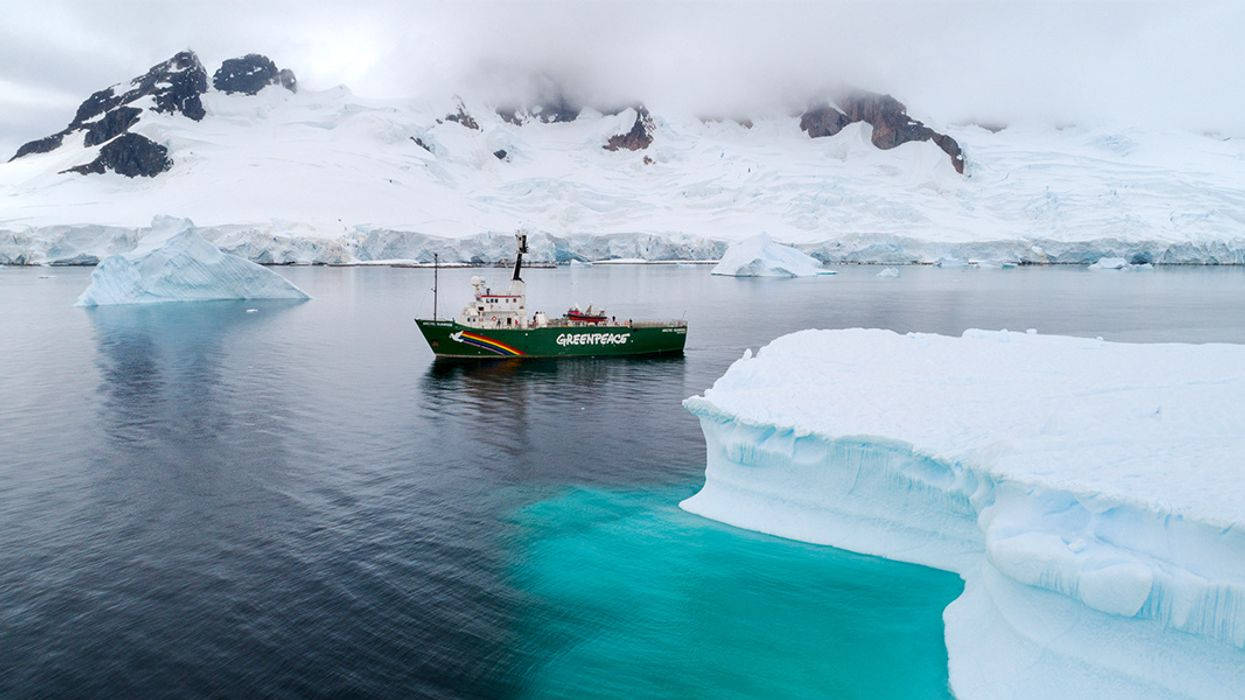 Greenpeace Finds Microplastics and Hazardous Chemicals in Remote Antarctic Waters