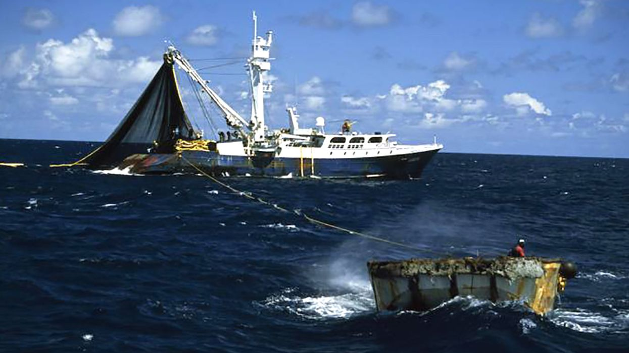 High Seas Fishing as Economically Unsustainable as It Is Ecologically