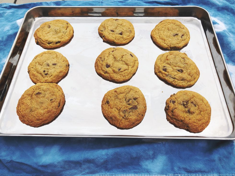 chocolate chip cookies baked on a stainless steel baking sheet