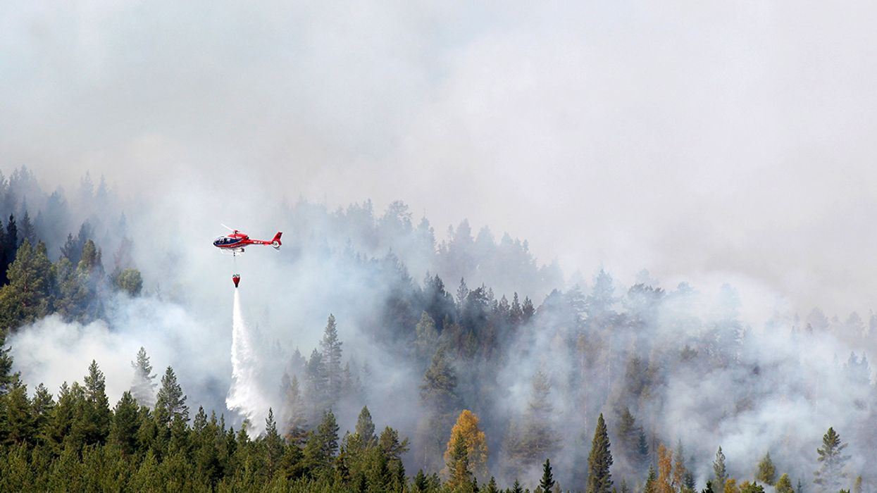 The Arctic Is Burning: Wildfires Rage from Sweden to Alaska