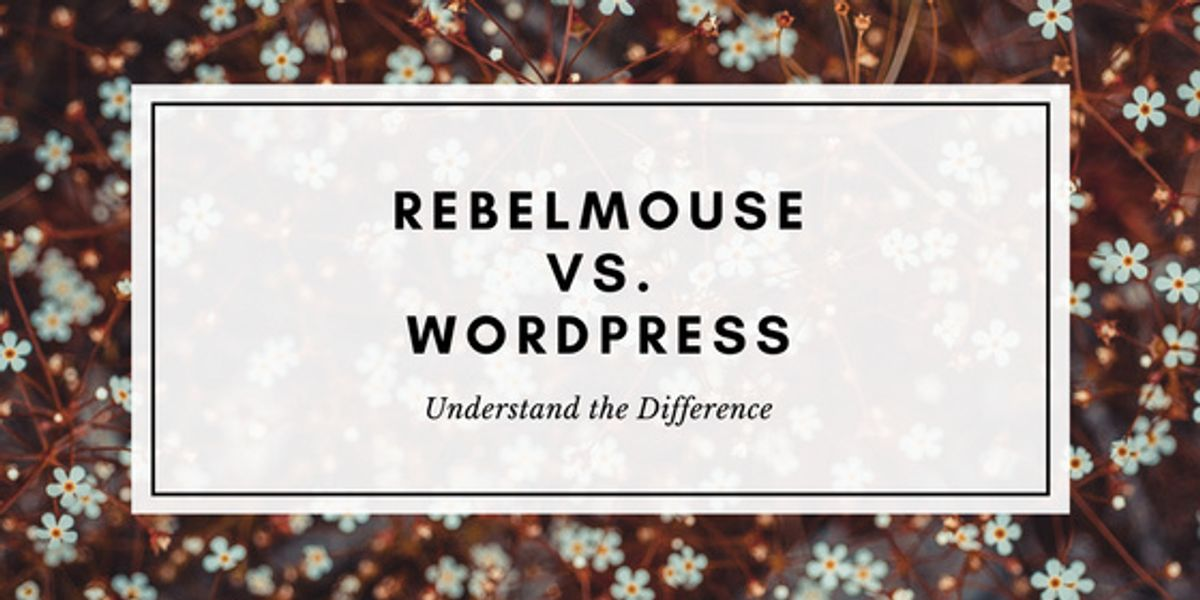 6 Reasons to Upgrade to RebelMouse from WordPress