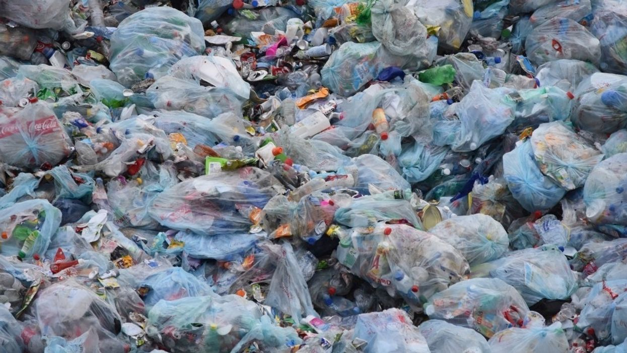 World's Plastic Waste Problem Now Predicted to Reach 111 Million Metric Tonnes by 2030