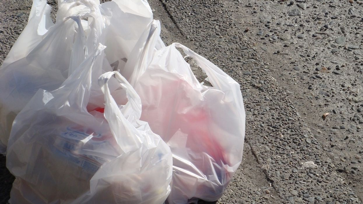 Texas Supreme Court Rules Cities Cannot Ban Plastic Bags