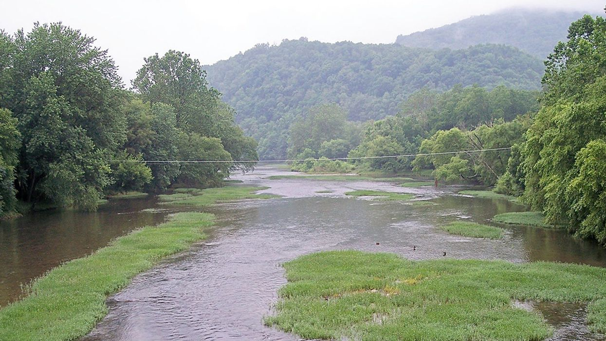 Court Orders Controversial Pipeline to Halt Construction Over West Virginia Streams and Wetlands