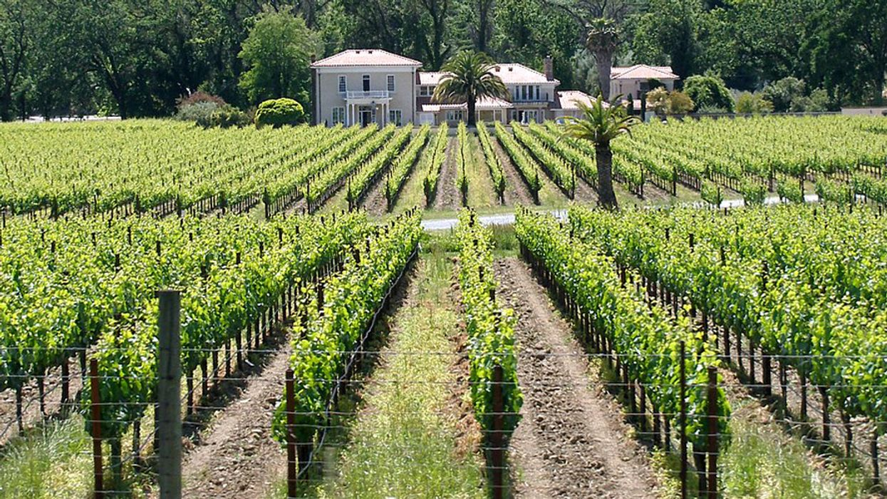 3 Agritourism Hotspots to Visit This Summer