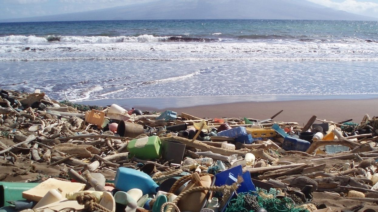 10 Most Common Types of Beach Litter Are All Plastic