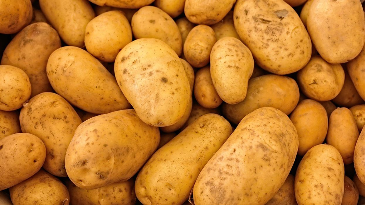 Potato Company Simplot Licenses DowDuPont's Gene Editing Tech