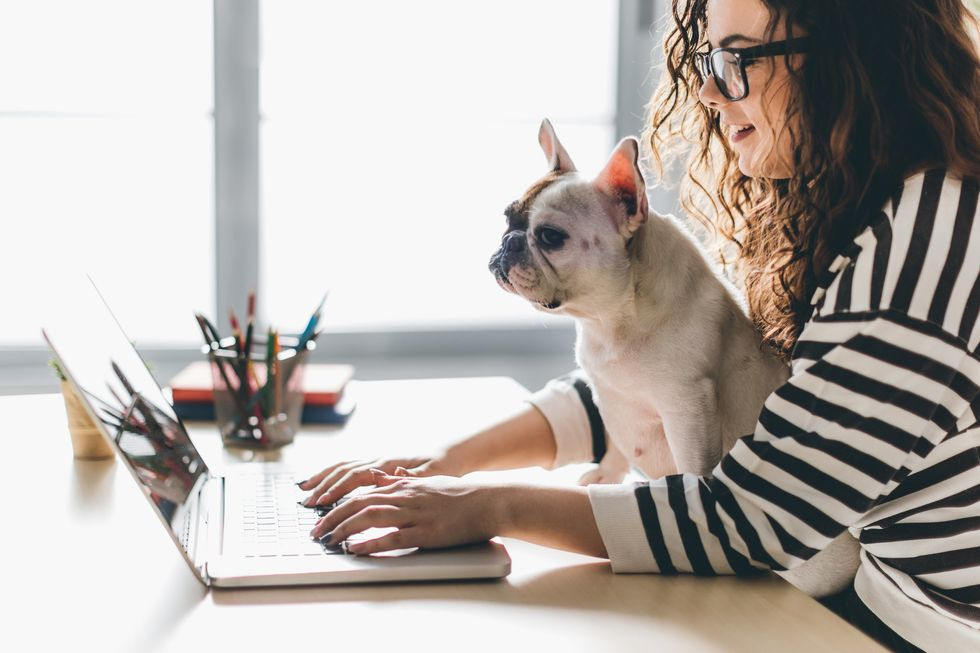 Your furry friend at work.