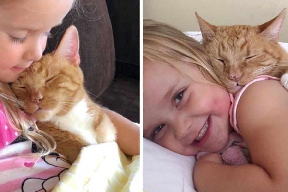 Woman Gave Kitten a Home, 13 Years Later, He Guards Her Daughter and Listens When She Reads