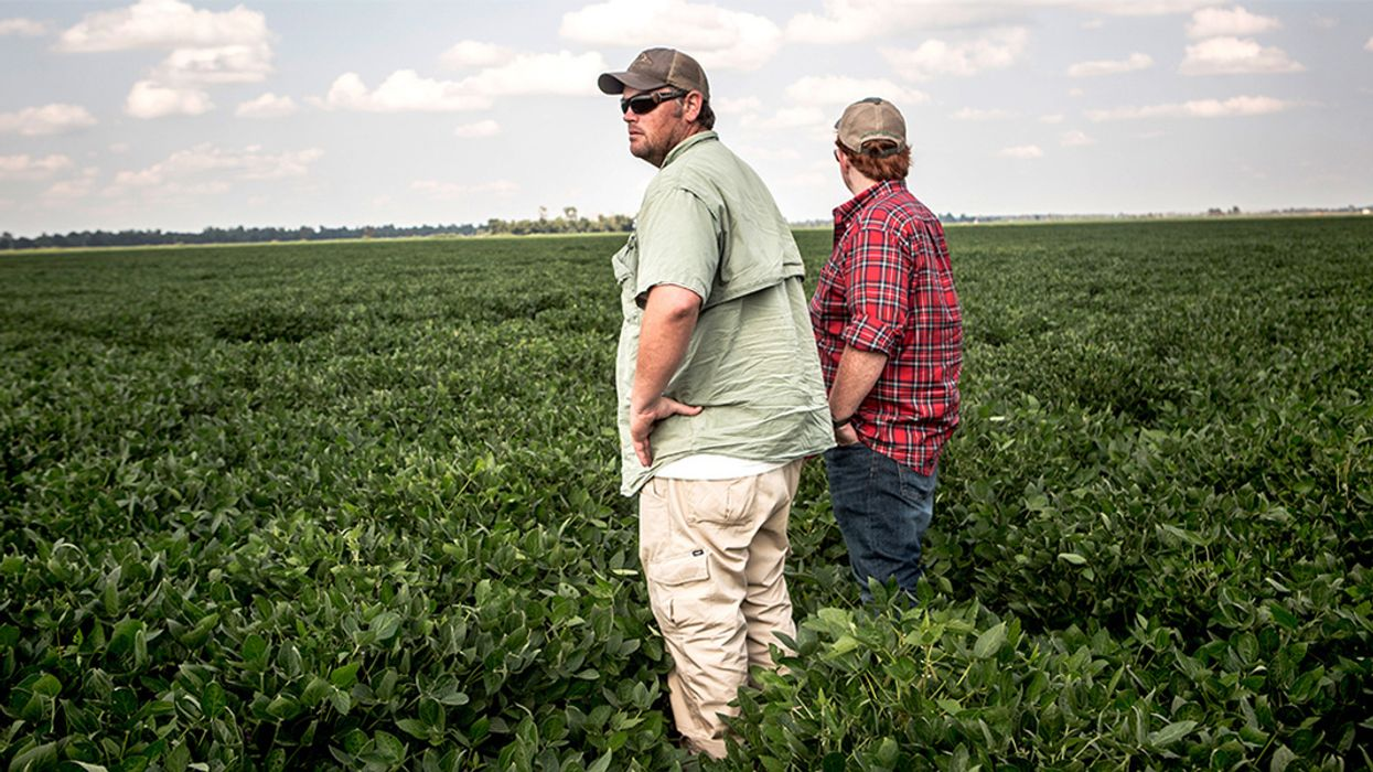 New Dicamba Drift Estimate: 1.1 Million Acres Damaged Already in 2018