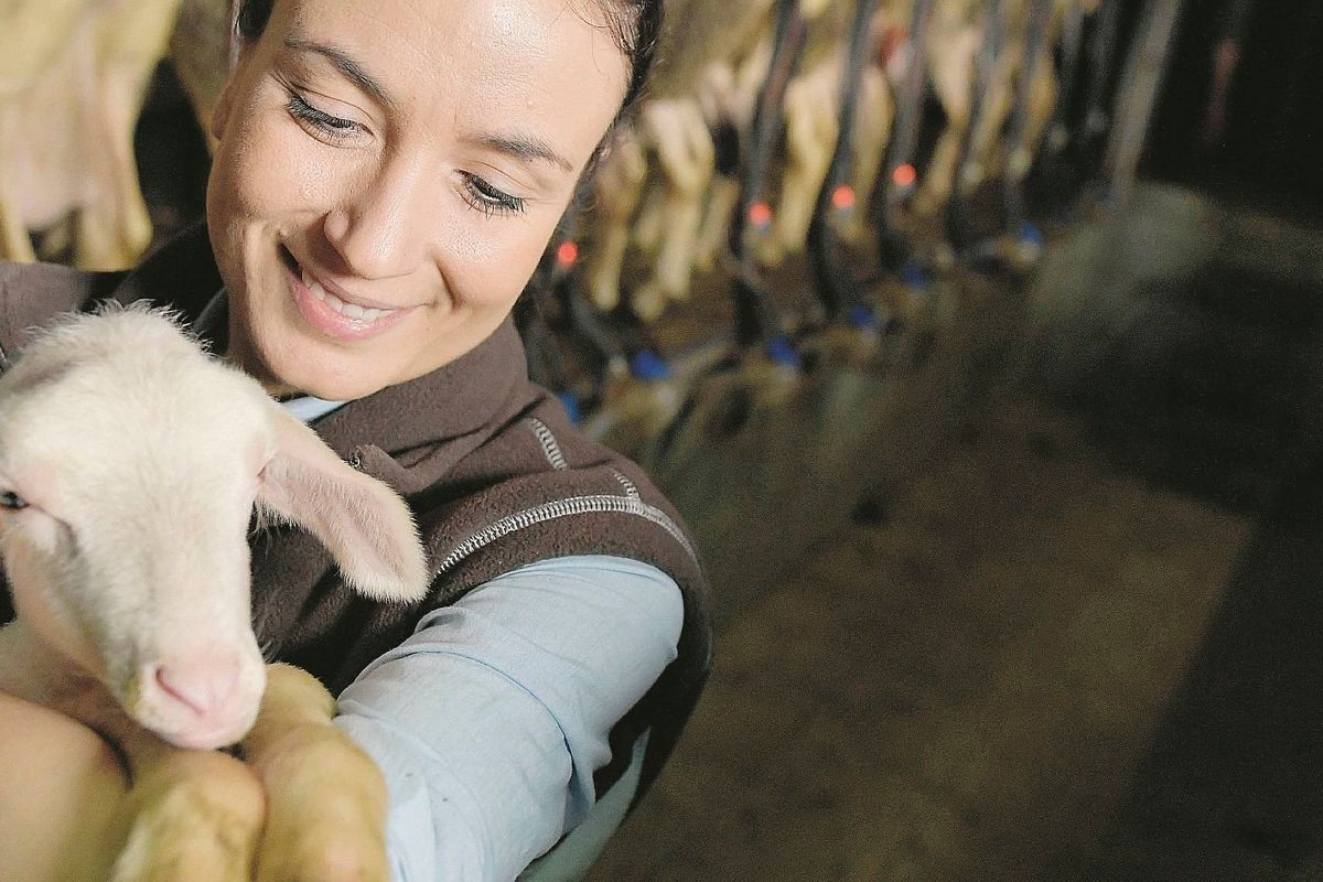 Altro che vegani: i primi veri animalisti sono gli allevatori