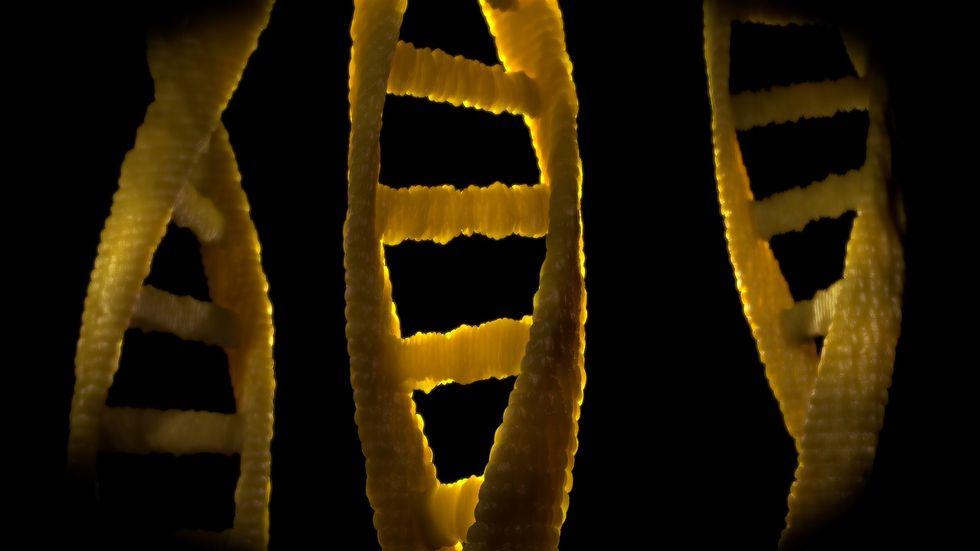 Dark DNA.