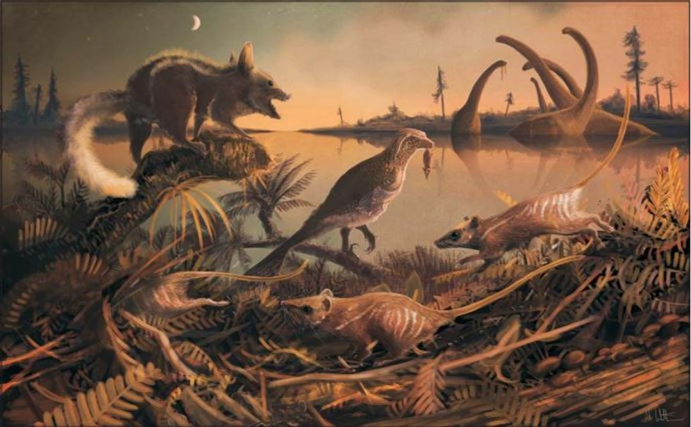 Prehistoric rodents depicted here are our earliest ancestors.