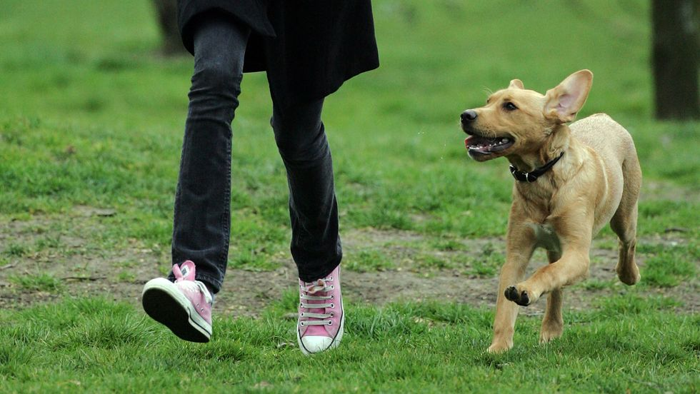 A girls running through the park with her dog. Photo: Matt Cardy/Getty Images