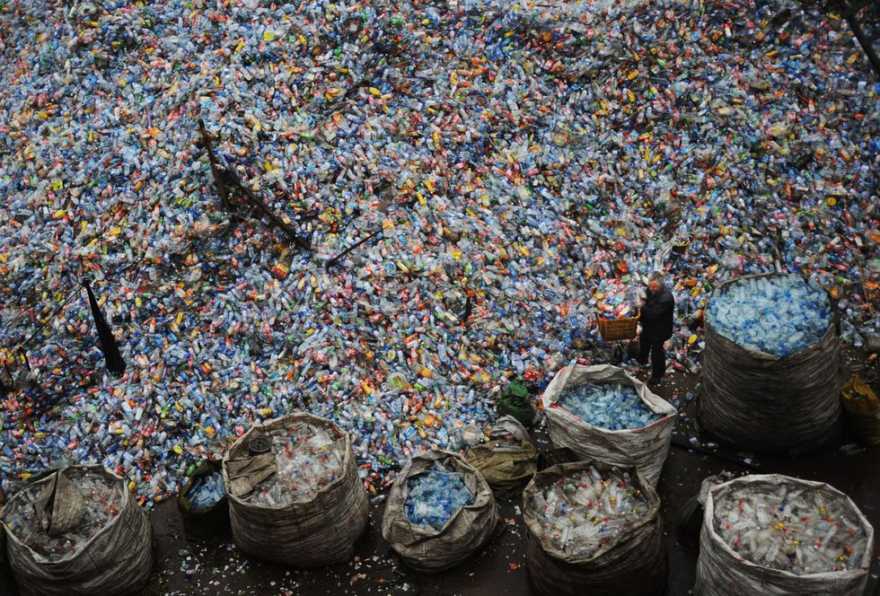 Plastic being sorted in China.