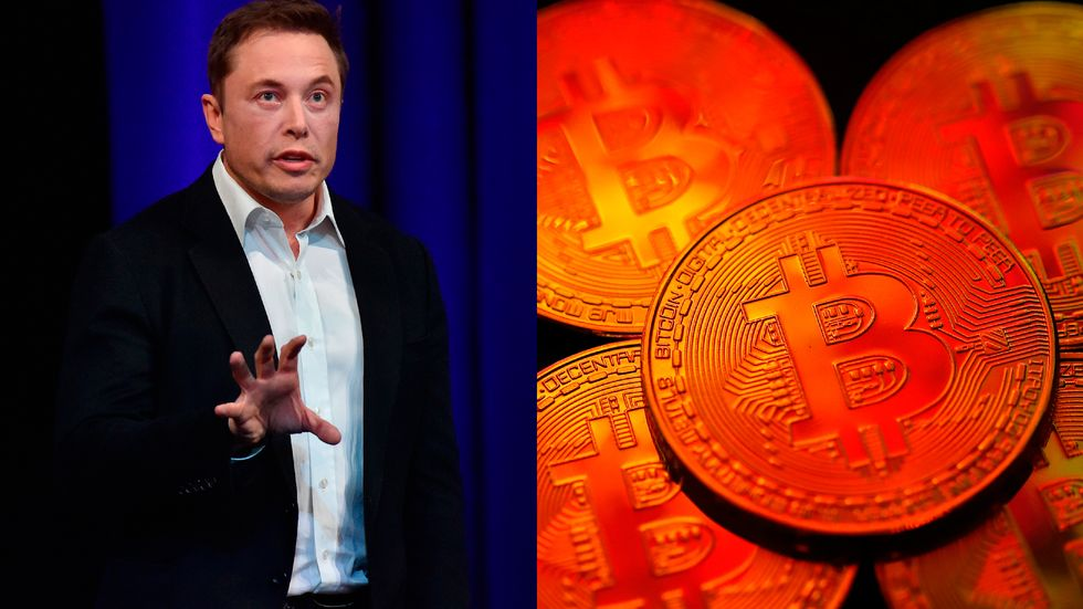 Elon Musk Is Now Linked to the Mystery of Who Invented Bitcoin - Big Think Elon Musk Is Now Linked to the Mystery of Who Invented Bitcoin - 웹