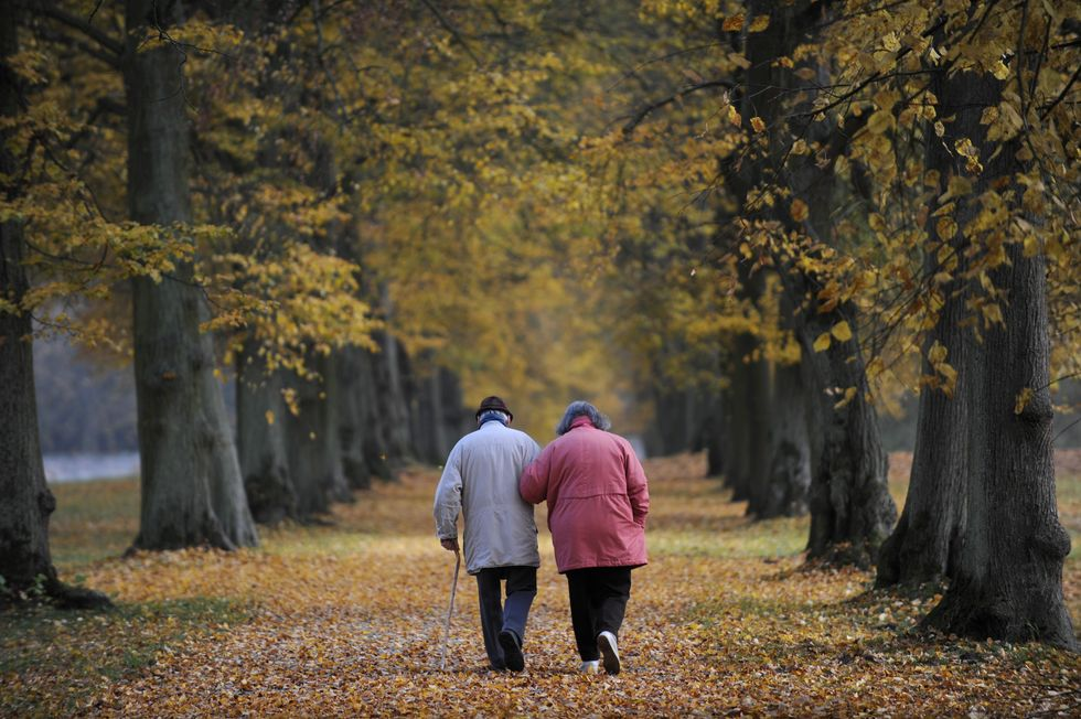 Scientists Discovered What Causes Dementia