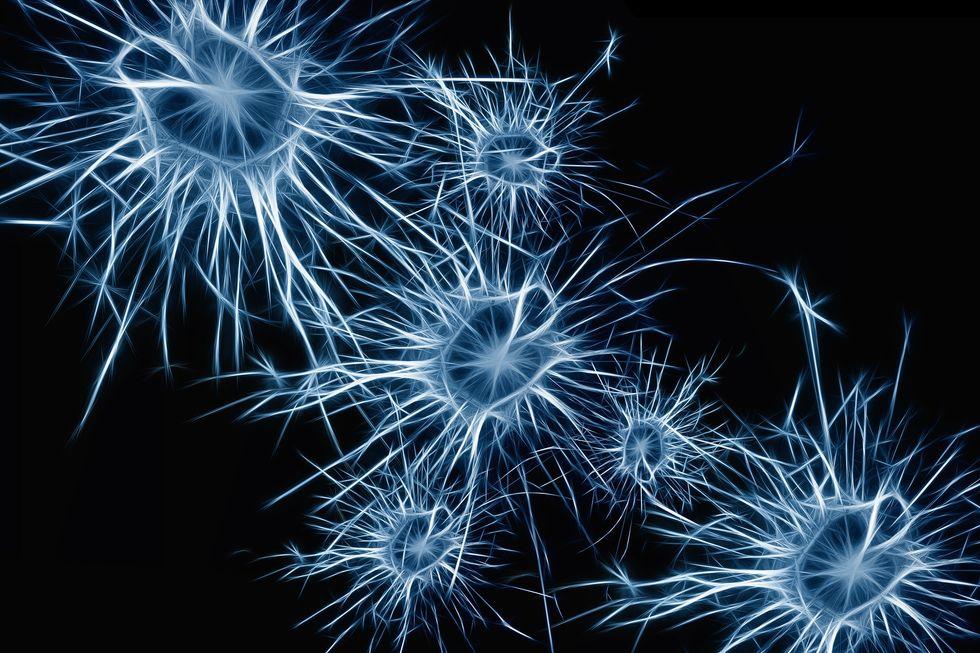Artist depiction of neurons inside the brain.