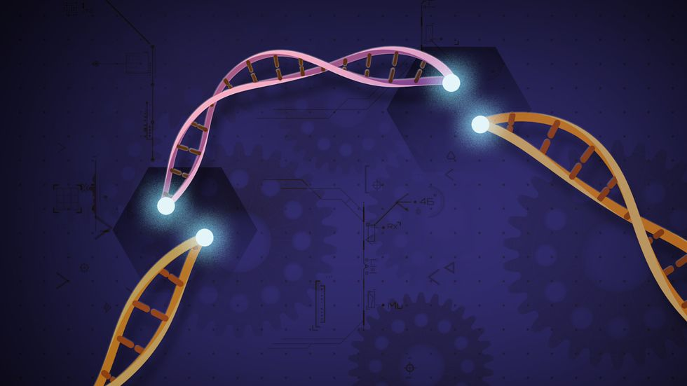 CRISPR rendering