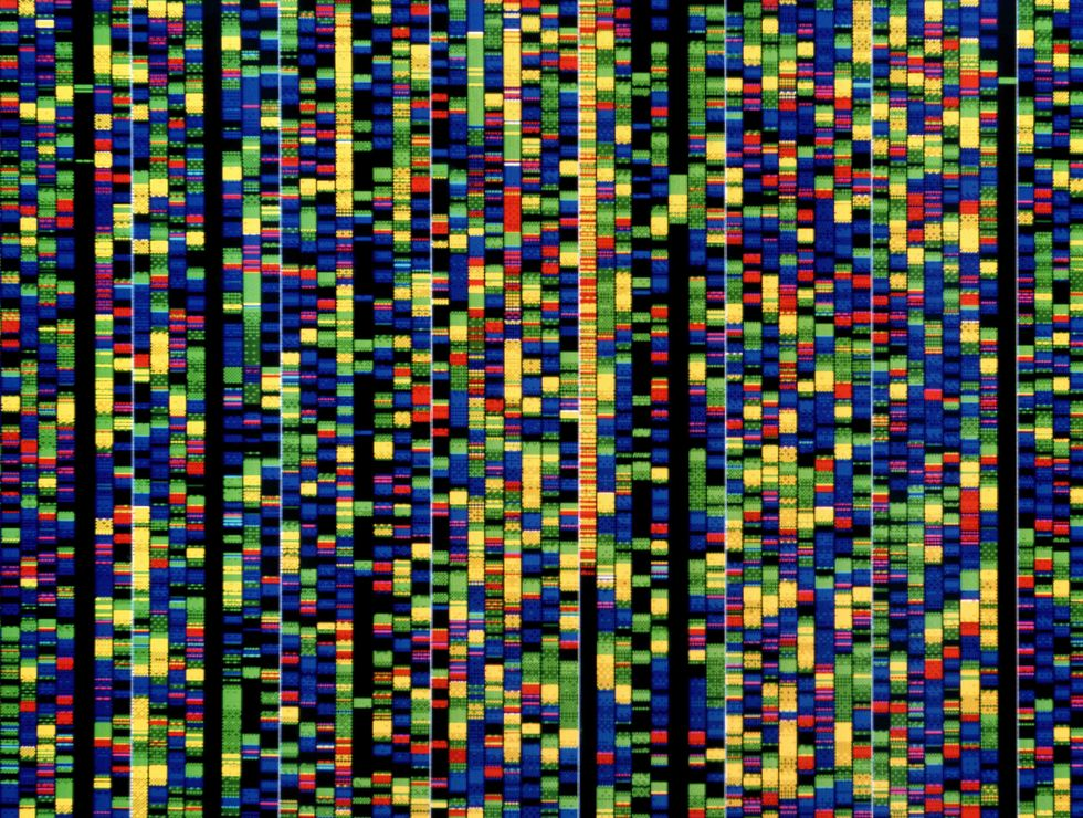 DNA sequencing. Computer screen showing a sequence of base pairs forming part of the human genetic code.