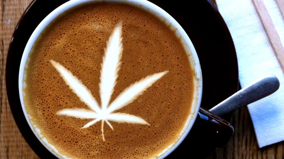 Study reveals surprising link in the brain between coffee and cannabis