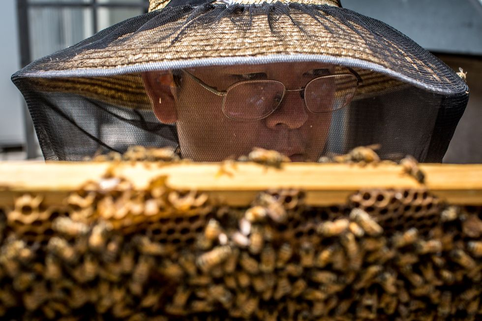A bee keeper with a hive.